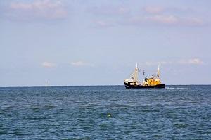 水産資源の保存を図る全国豊かな海づくり大会